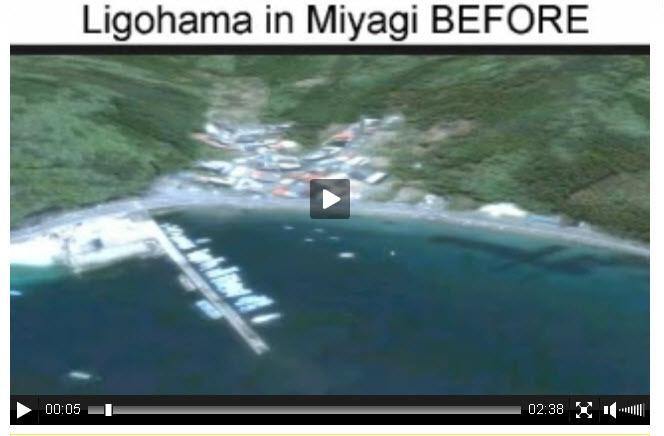 Earthquake Images in Japan 2011 Japan Earthquake 2011